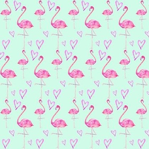 flamingos in mint