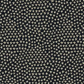 tiny gold stars