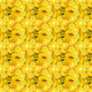 Three_bees_1