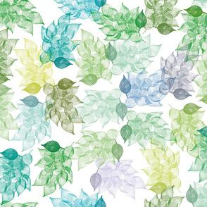 prunus_leaves