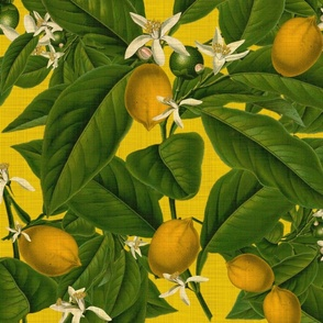 Lemon Botanical ~ Whist ~ Linen Luxe