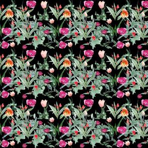 Growing_tulips_on_black