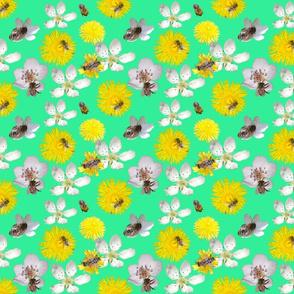 Springtime_with_bees_türkis