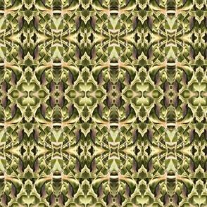 Moth Kaleidoscope
