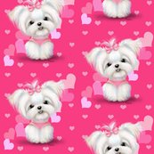 Maltese_pink_hearts_2__copy_shop_thumb