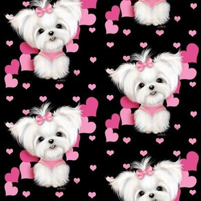Maltese Black and  hearts M