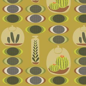 Cactus Terrariums on mustard