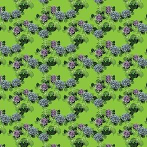 Polly_s-Garden-green