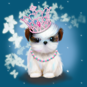 Shih Tzu Night Princess