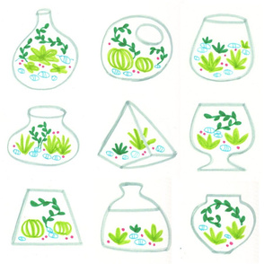 Jolly Green Terrariums