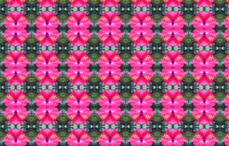 Pink hibiscus photo fabric by pila_fashion_design on Spoonflower - custom fabric