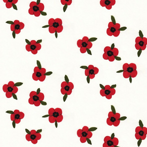 Poppies by Jackie Maphis