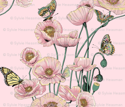 Poppies_and_Butterflies_Pastel_on_Dk_pink_bg