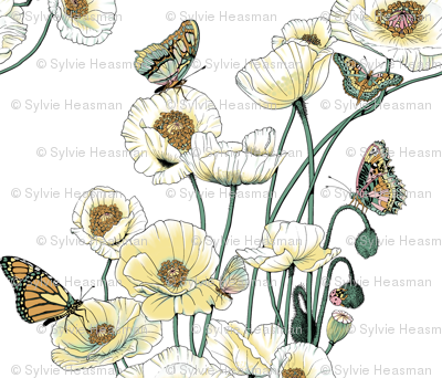 Poppies_and_Butterflies_Pale_yellow_blossoms_on_white