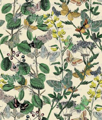 Springtime In The Butterflies' Garden ~ Small
