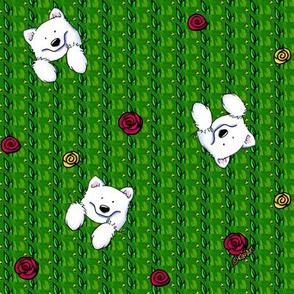 Rose Garden Sams