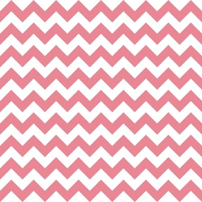 Peachy Pink Chevron