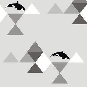 Geo Mod Orca