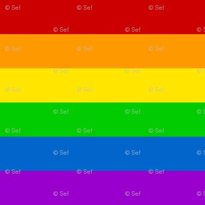 03149617 : rainbow flag : 6 colour bands