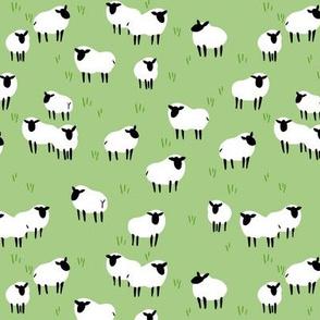 Ba Ram Ewe -- Field Ditzy