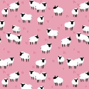 Ba Ram Ewe -- Cotton Candy Ditzy