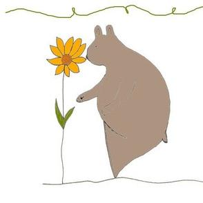 A Gentle Bear