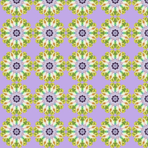 Lavender___Yellow_Floral