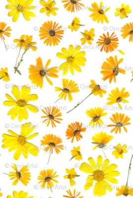 Flowering #3