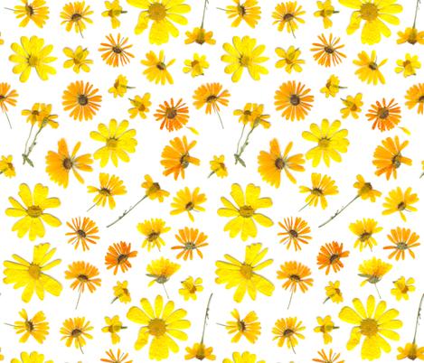 Flowering #3 fabric by ornaart on Spoonflower - custom fabric