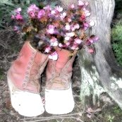 Boots.-square_18x18_shop_thumb