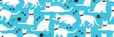 Black Tie Kitties