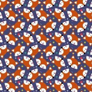 Fox by night