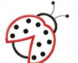 Rladybugbeetlepic.jpg_thumb