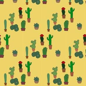 cactusness