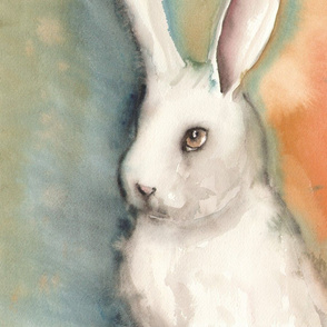 Portrait of a White Rabbit