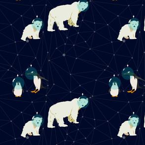 Arctic Stars