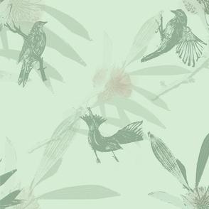 Hakeabirdgreenhaze
