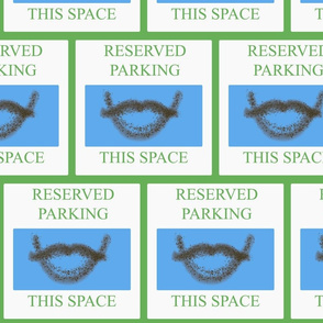 Stash_Parking