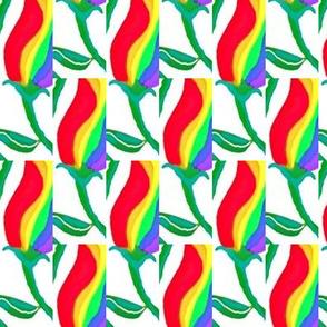 Rainbow Tulip 2
