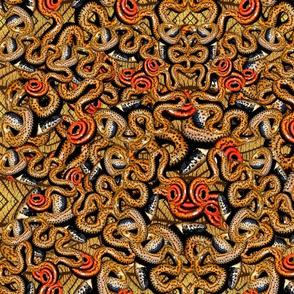 Ringneck Snake Swirl