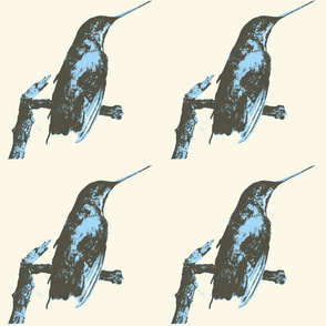 Blue Hummingbird by Linda Miller