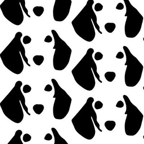 dachshund small B&W