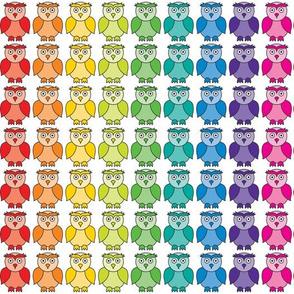 Rainbow Owl Pattern