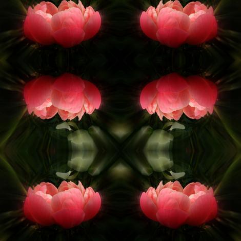 peony mirror fabric by cathymcg on Spoonflower - custom fabric