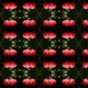 Rrrpeony_iris_garden_1_ed_ed_shop_thumb
