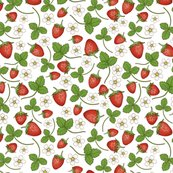 Rrstrawberries_2_shop_thumb