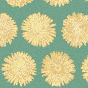 jumbo dandelions in Spring