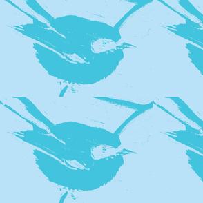 Blue Fairy Wren 2 Blues