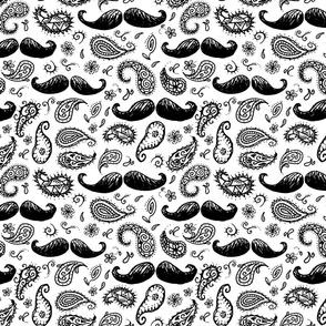 mustache_paisley