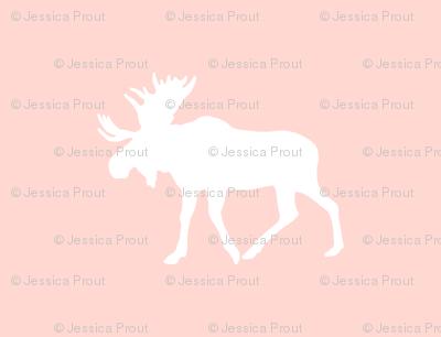 moose // rose